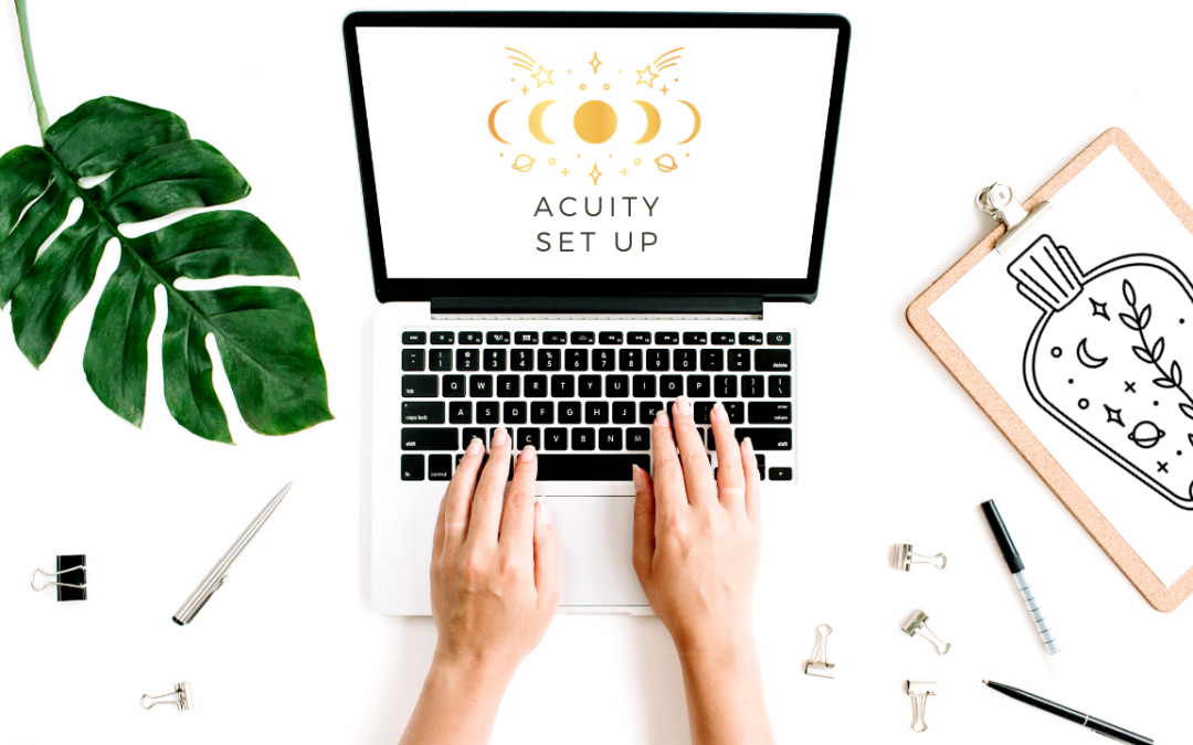 Acuity Set Up